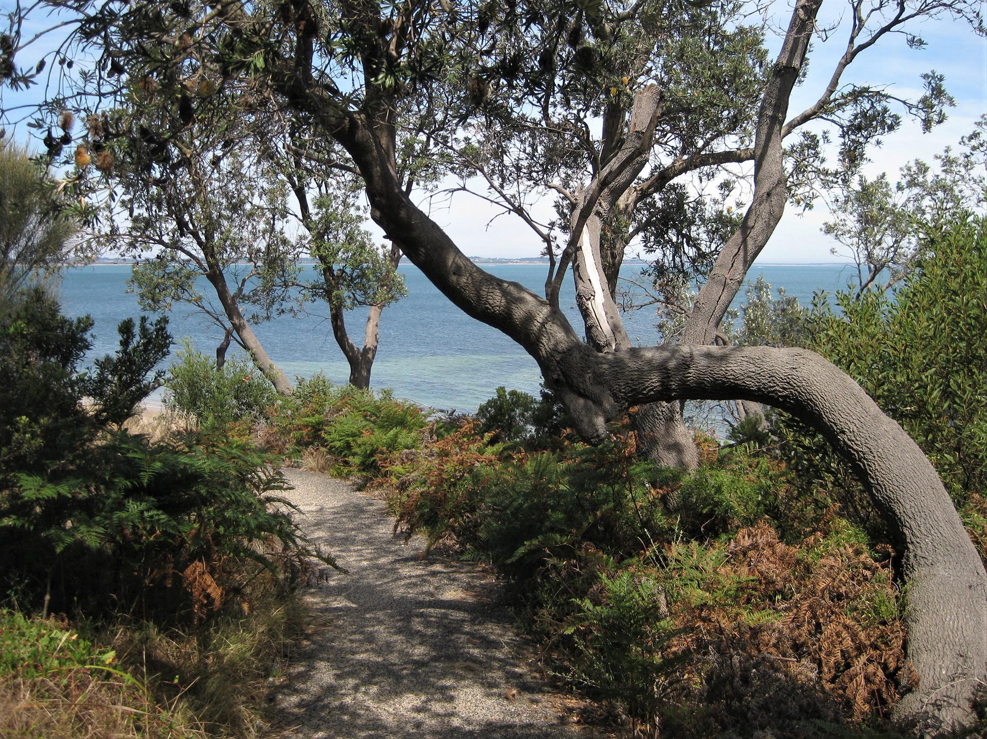 Somers Beach, Victoria, Australia - Writers Residency