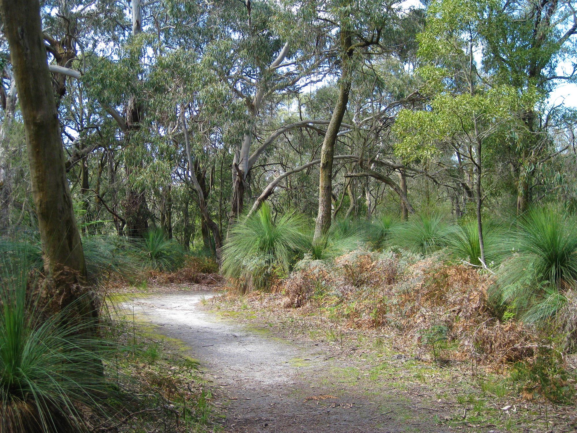 Green's Bush, Baldry Crossing, Mornington Peninsula, Victoria, Australia
