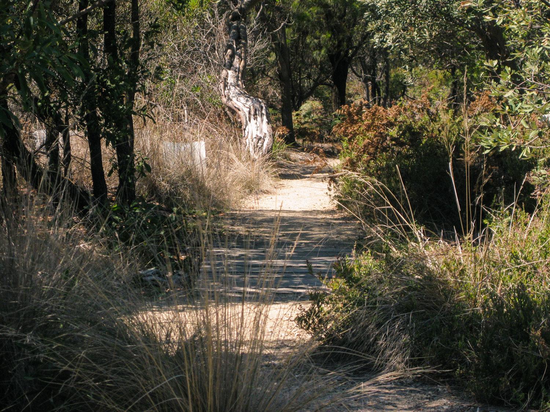 Koala Walk, Somers, Victoria, Australia