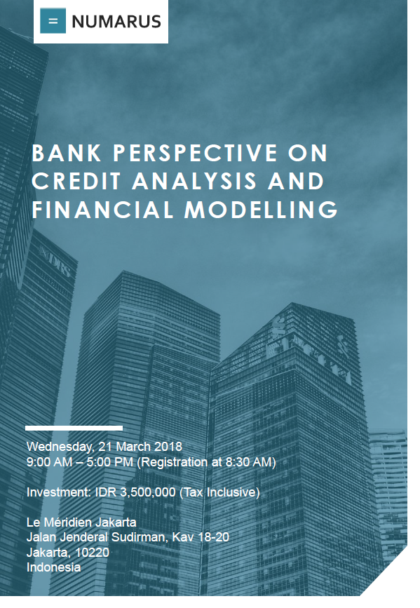Bank Perspective on Credit Analysis and Financial Modelling.PNG