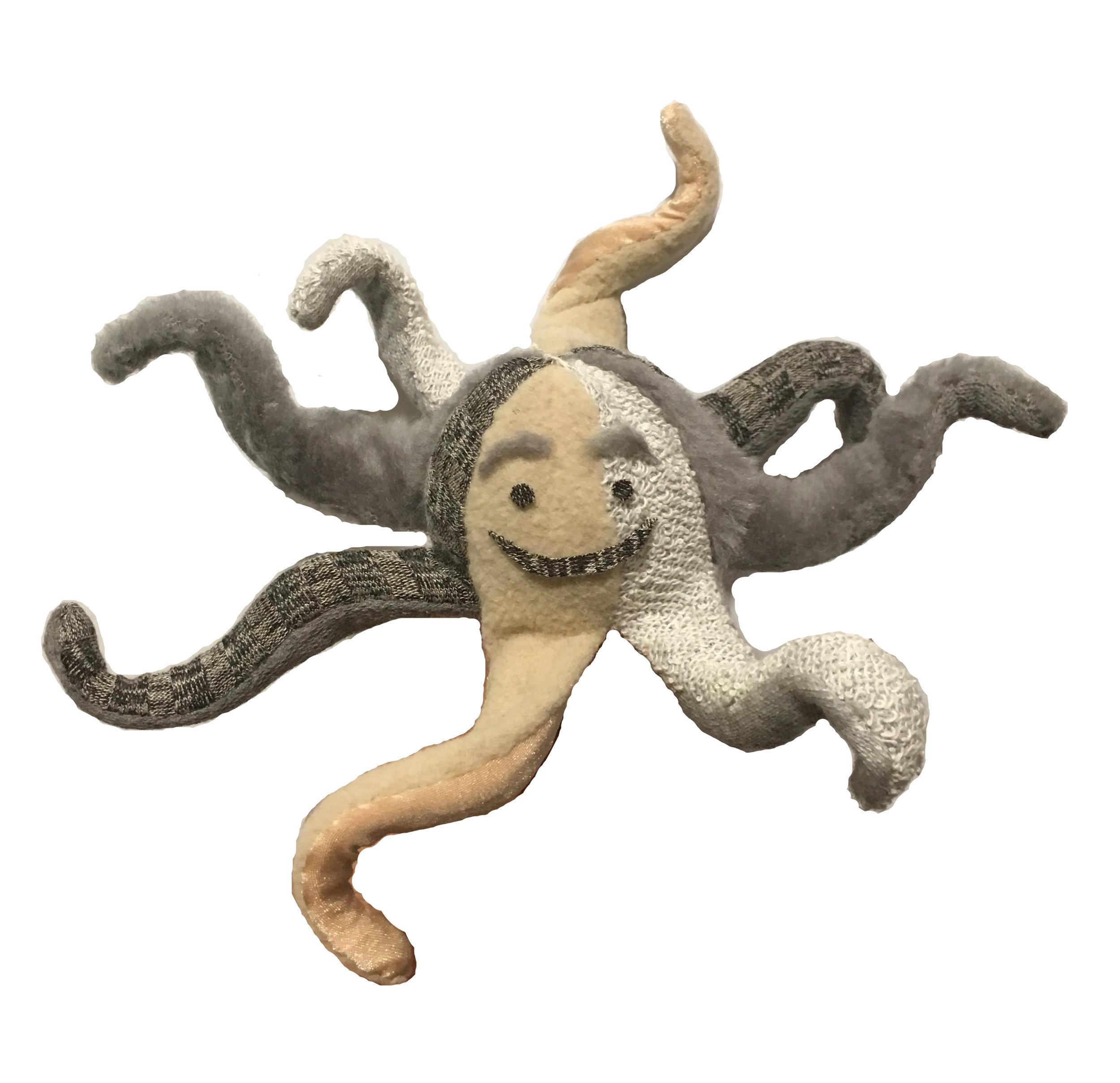 octopus_after.jpg