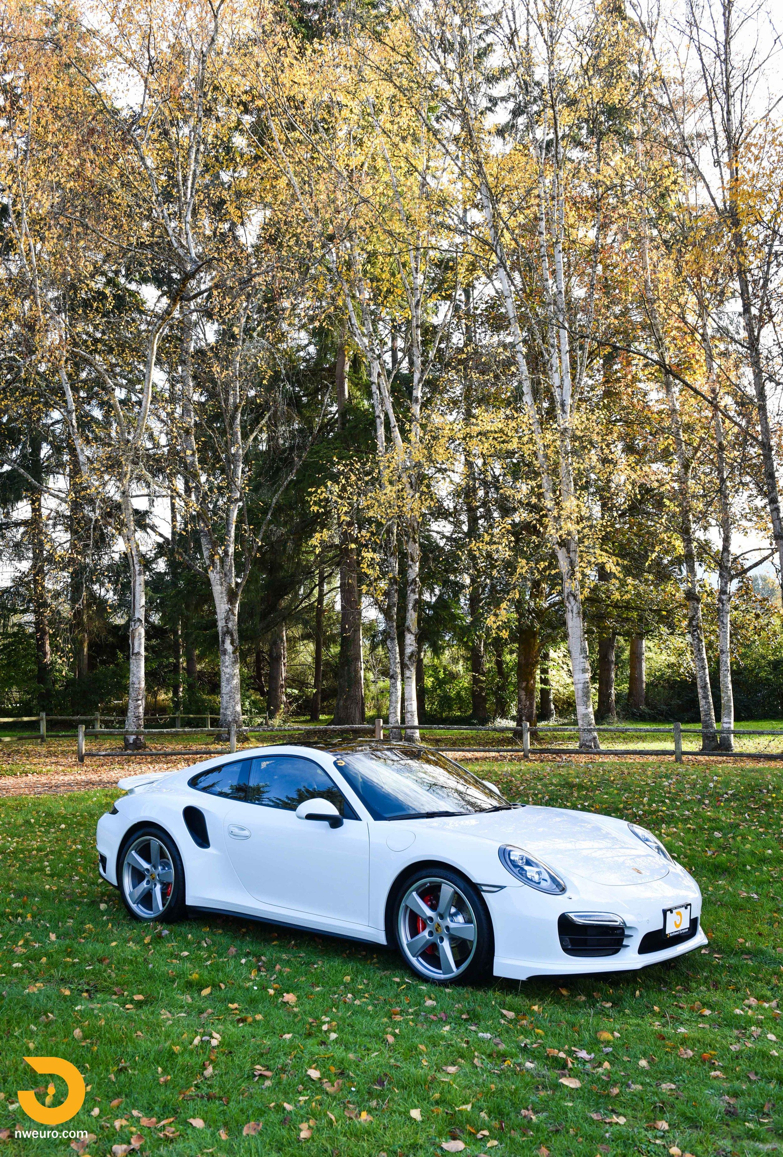 2014 Porsche 911 Turbo-31.jpg