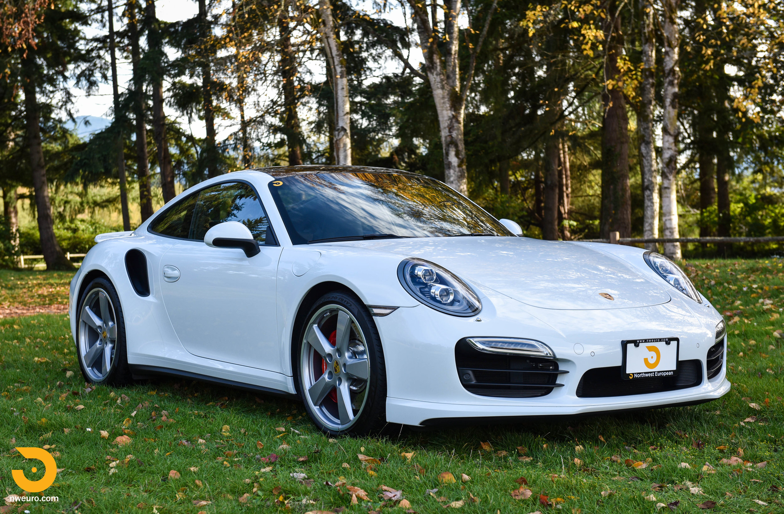 2014 Porsche 911 Turbo-32.jpg