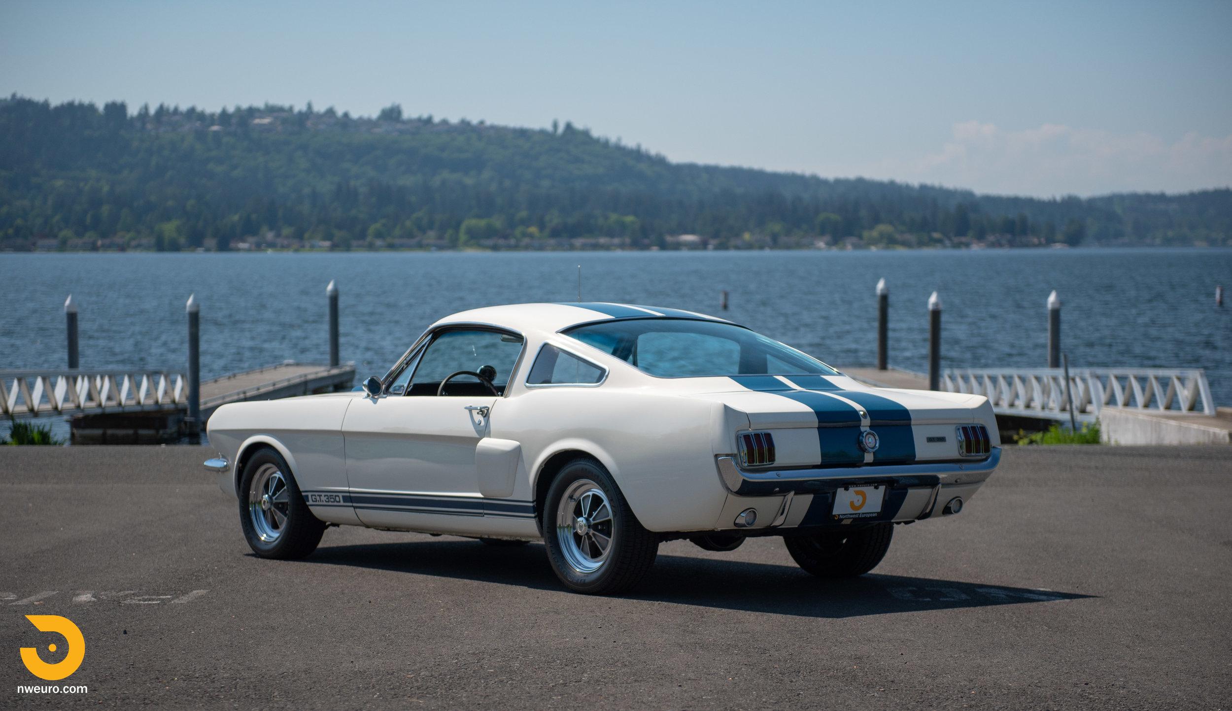 1966 Shelby GT350-15.jpg