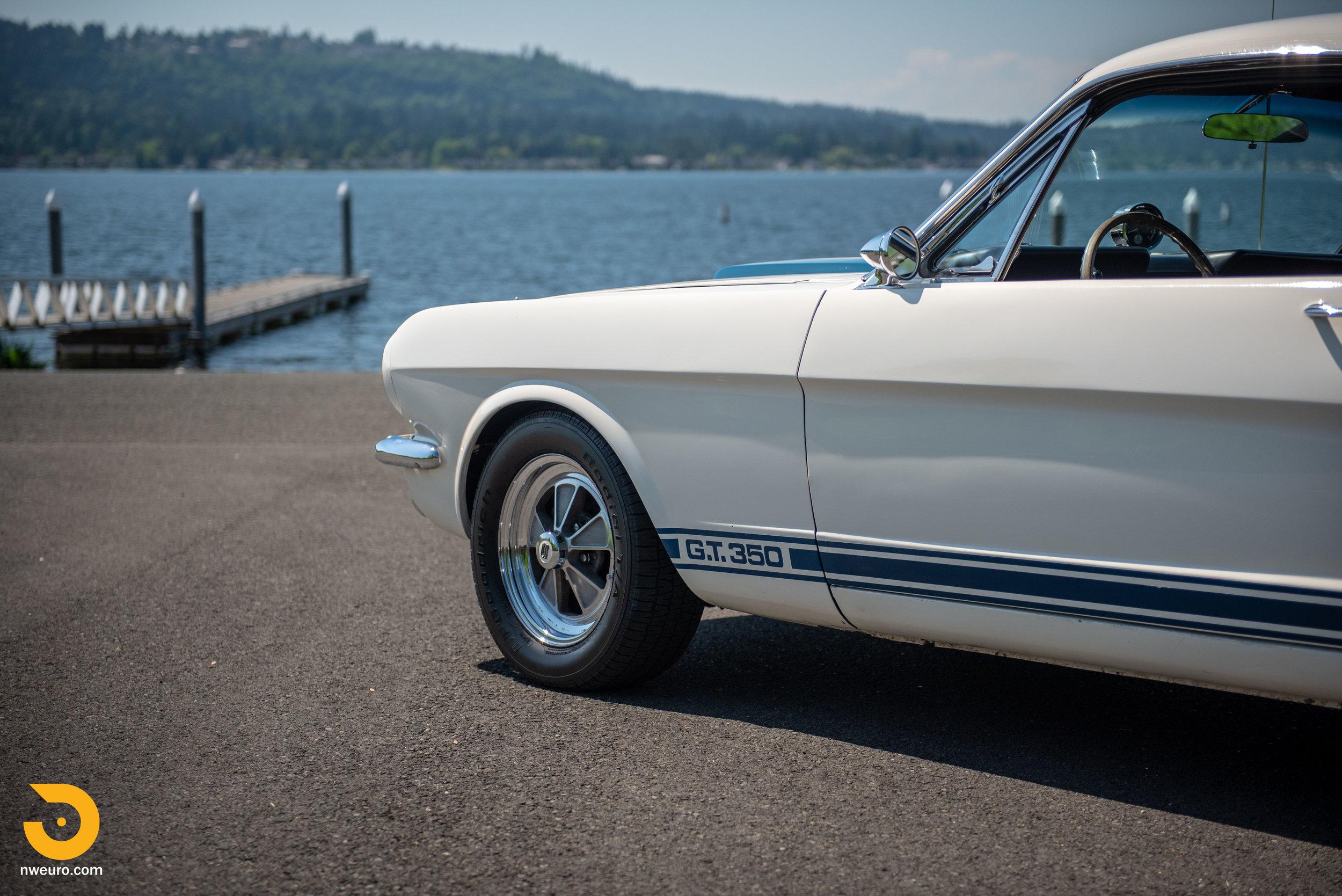 1966 Shelby GT350-17.jpg
