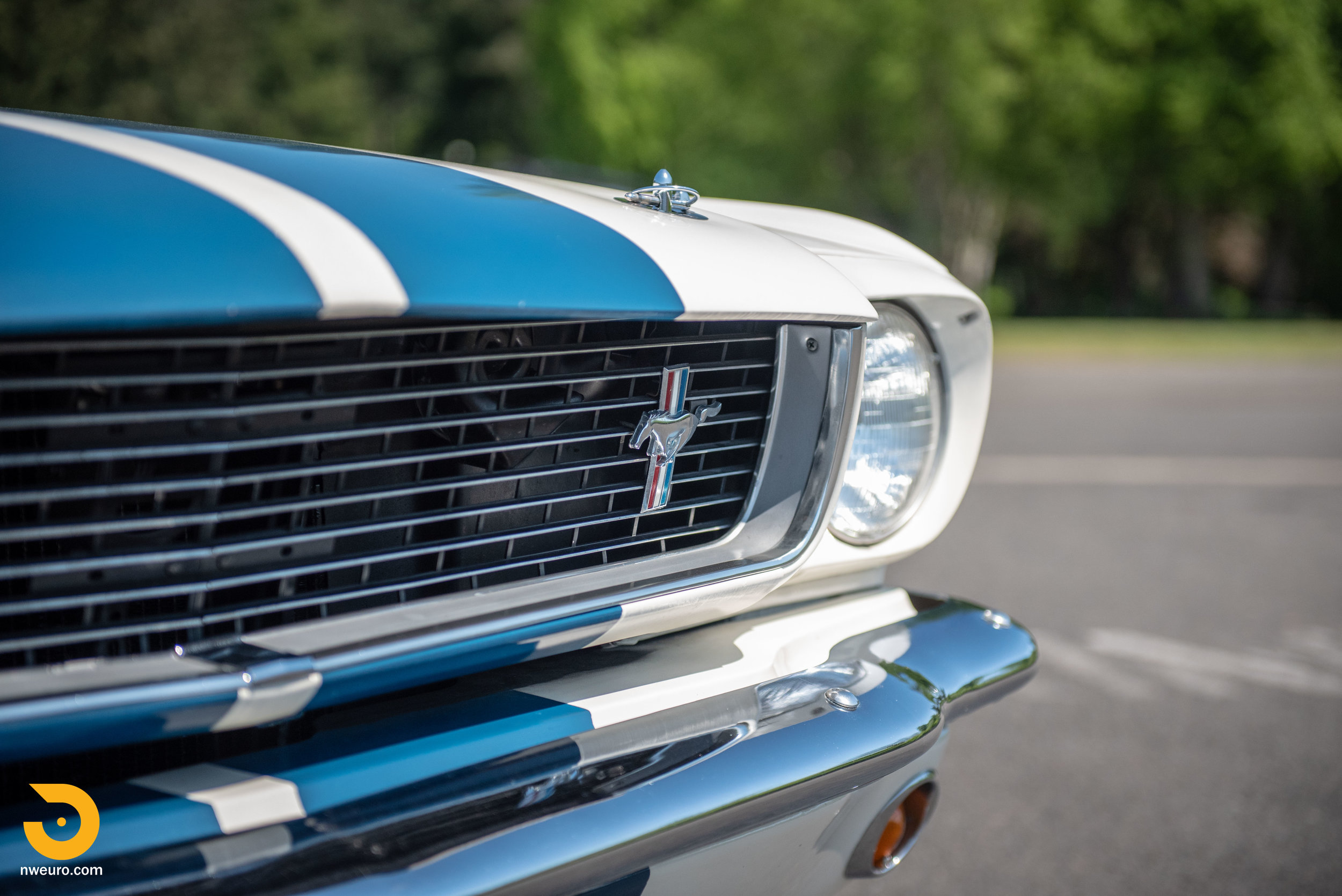 1966 Shelby GT350-22.jpg