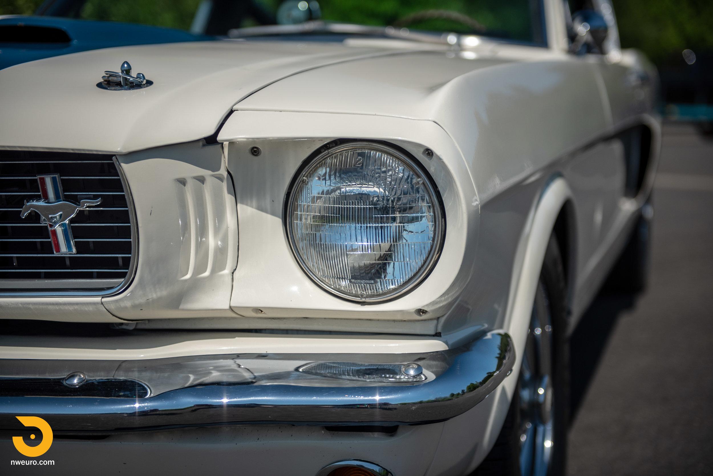 1966 Shelby GT350-24.jpg