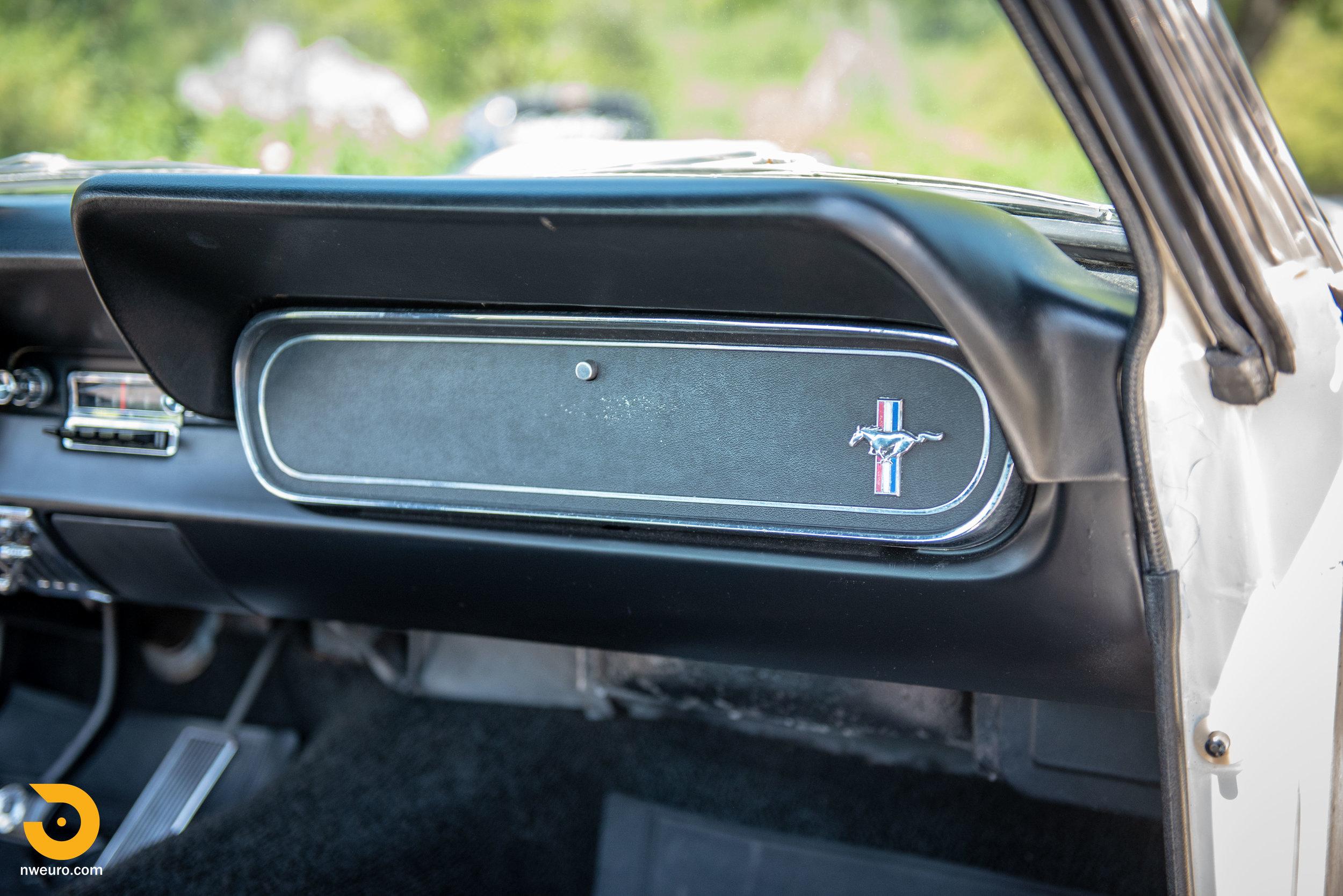 1966 Shelby GT350-51.jpg