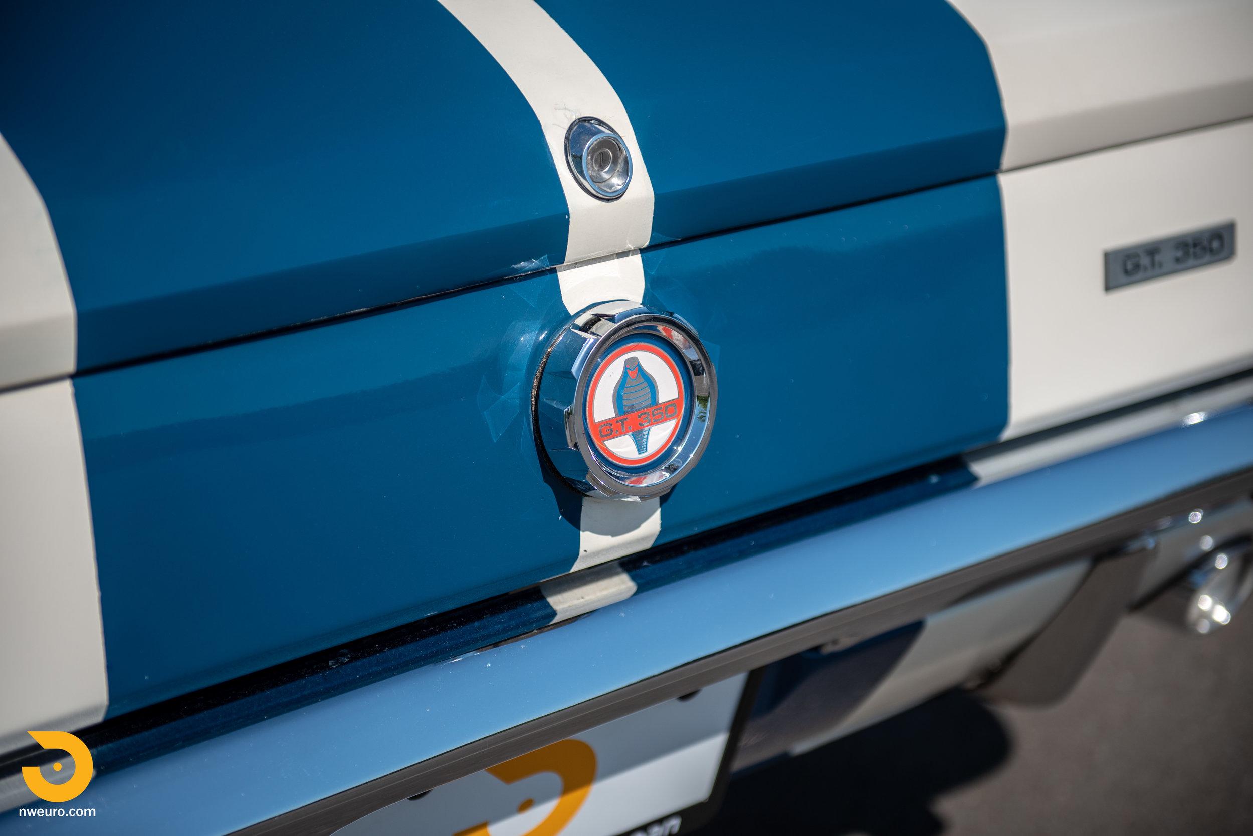 1966 Shelby GT350-91.jpg