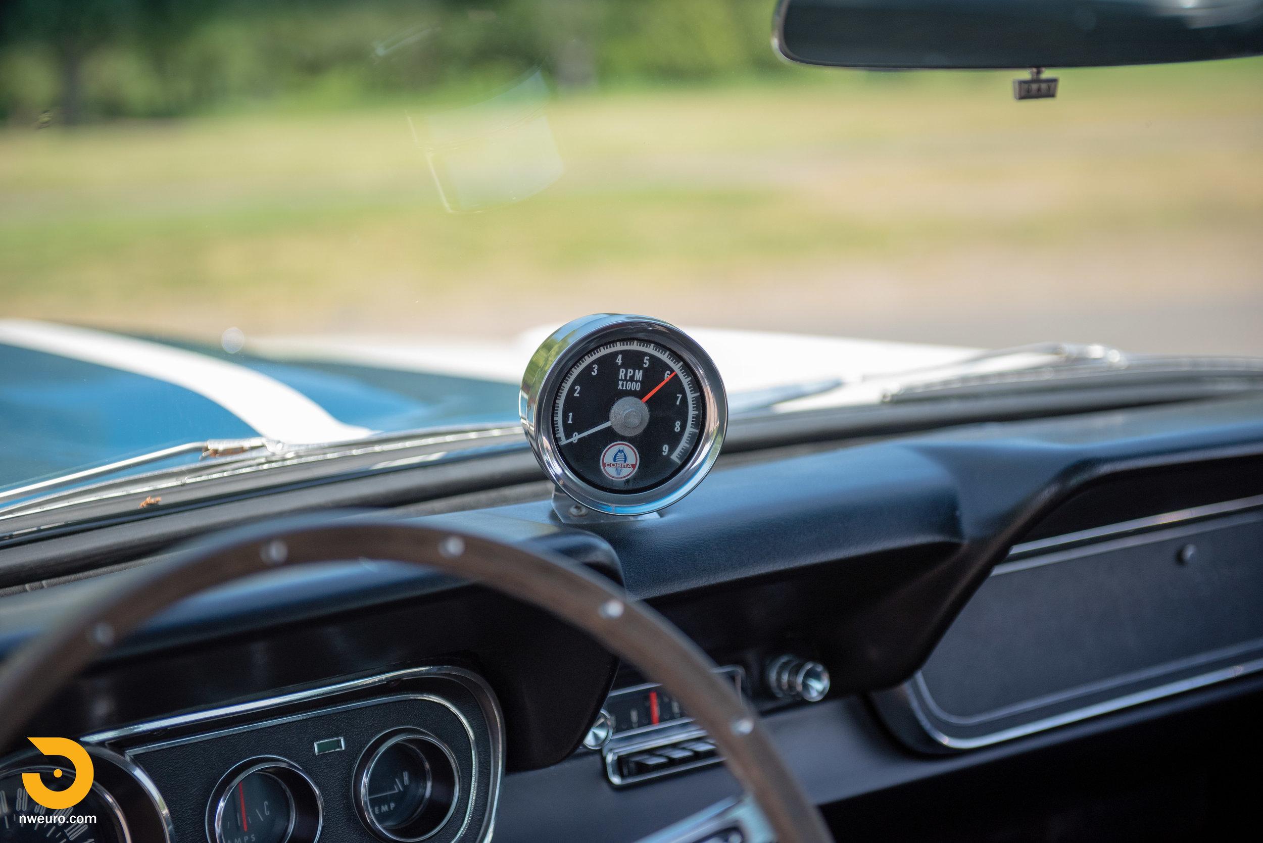 1966 Shelby GT350-92.jpg