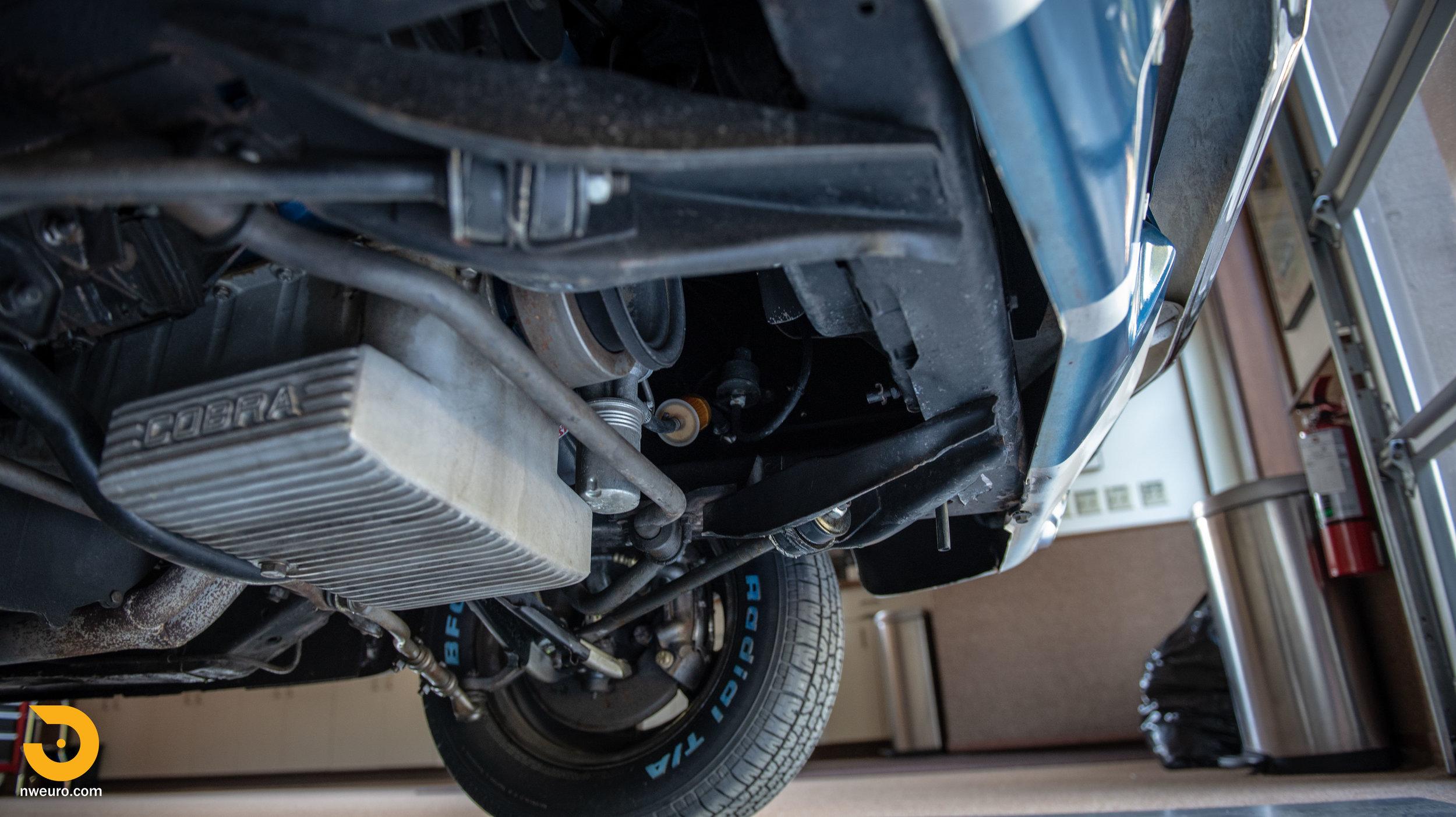 1966 Shelby GT350-98.jpg