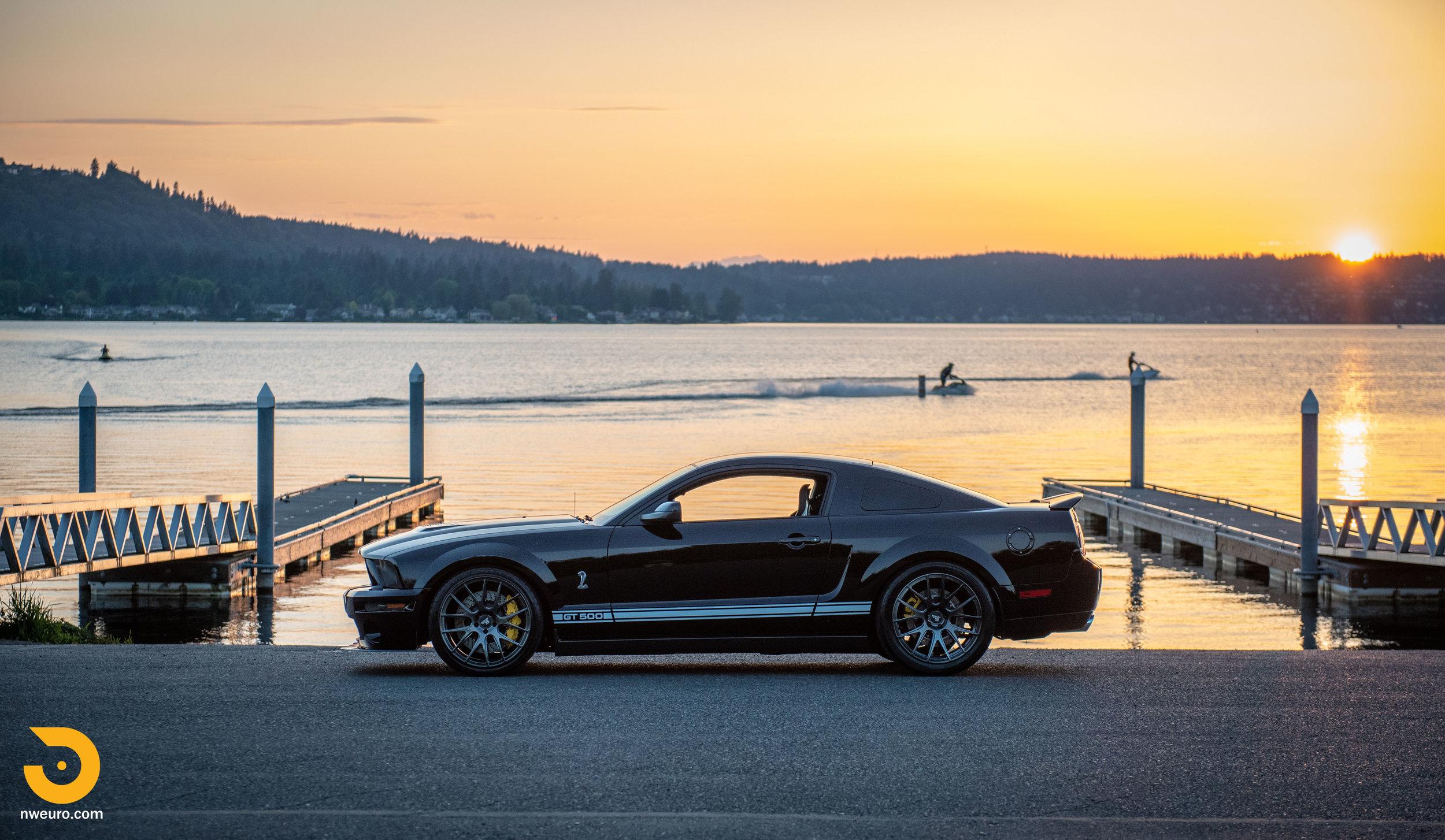 2009 Shelby GT500-47.jpg