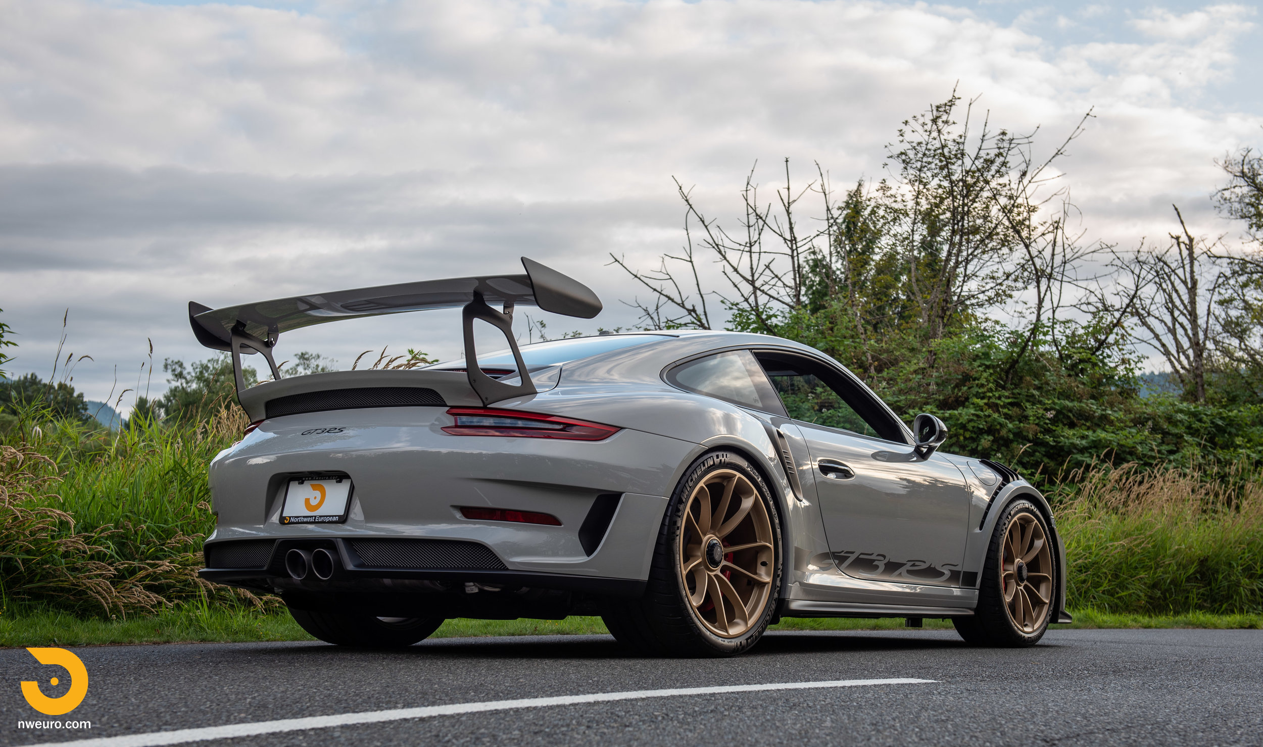 2019 Porsche GT3 RS - Chalk-70.jpg