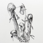 Growth #5, 2013, Archival ink on 600 gsm Arches, 38cm x 28cm