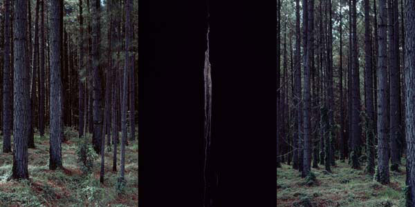 Carl Warner, Nothing To See Hear 01 (2006), type C photograph, 75 x 150cm (framed), edition of 5