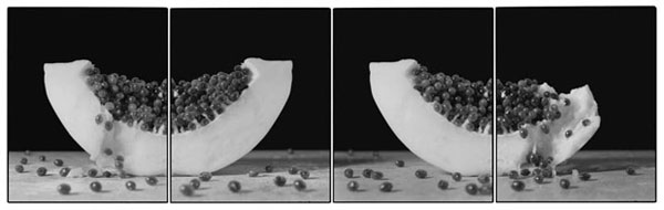 Joachim-Froese-Rhopography-42.jpg