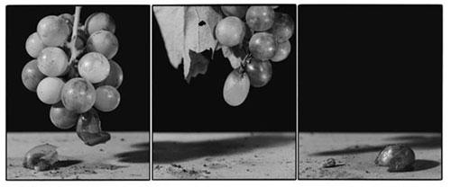 Joachim-Froese-Rhopography-38.jpg