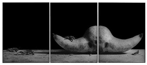 Joachim-Froese-Rhopography-29.jpg
