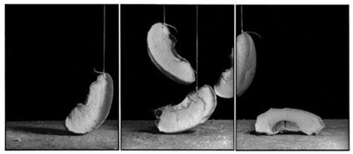 Joachim-Froese-Rhopography-27.jpg