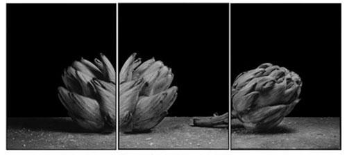 Joachim-Froese-Rhopography-26.jpg