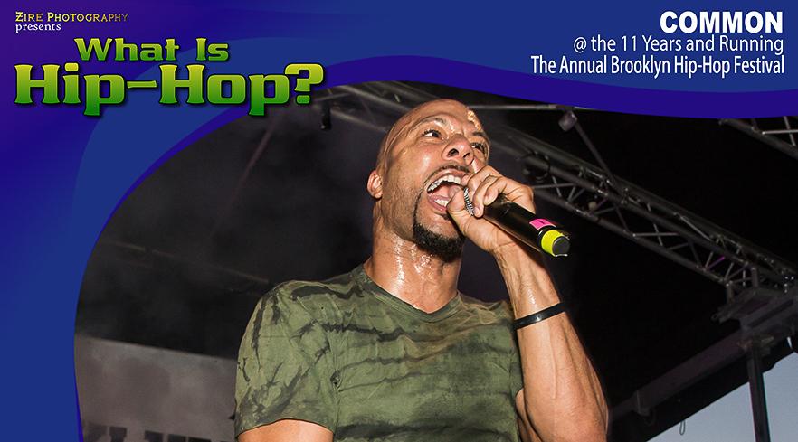 11 Years Running! The Annual Brooklyn Hip-Hop Festival 2015