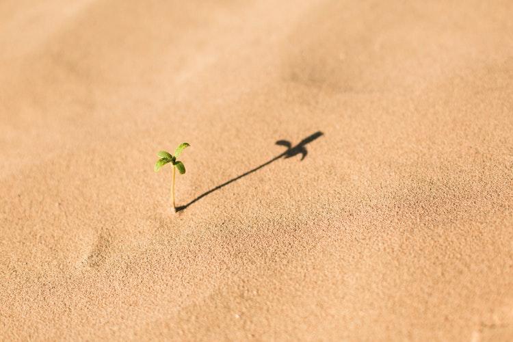 Matt Henricks.Small Actions Make a Difference.jpg