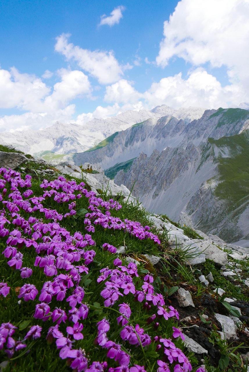 Innsbruck-1030392.jpg