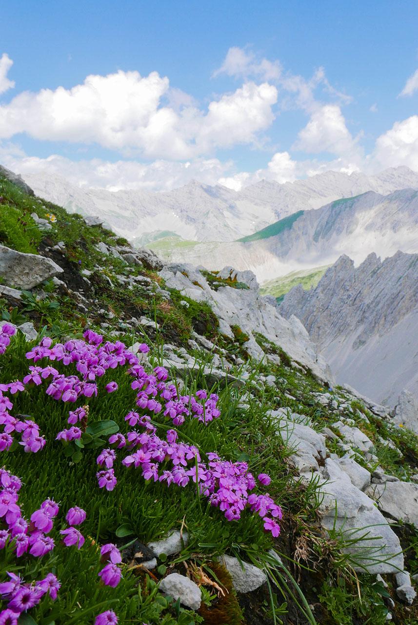 Innsbruck-1030398.jpg