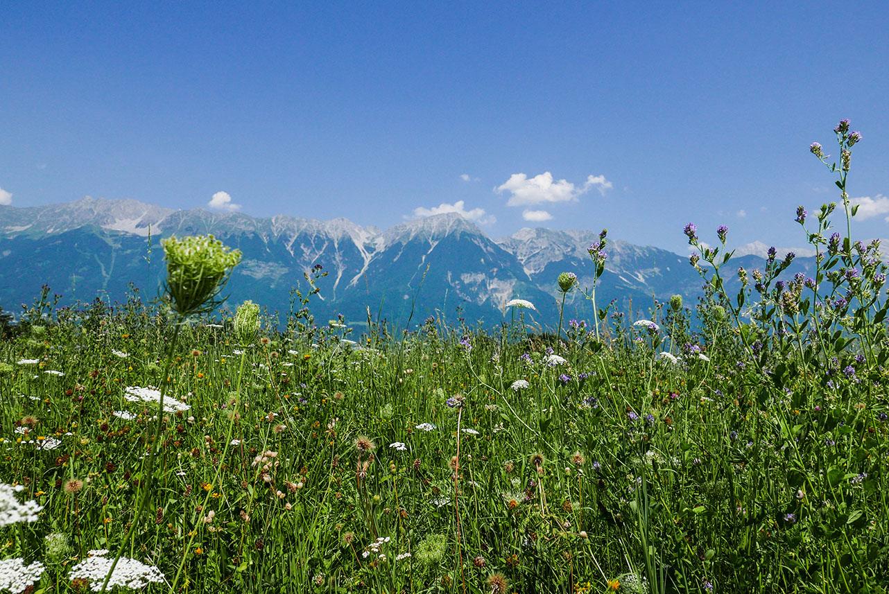 Innsbruck-1030927.jpg