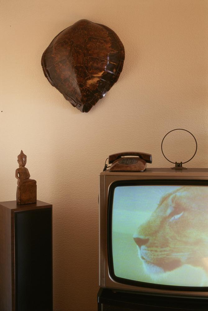 reggiardo-objet-television-12.jpg