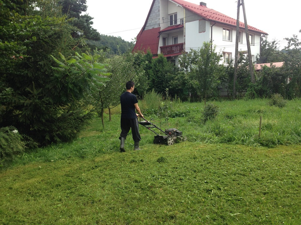 Chopping the grass without the storage compartment.