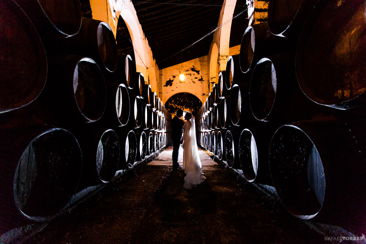 boda-bodega-fundador-jerez-rafael-torres-photo-fotografo-mary-alex-942.jpg