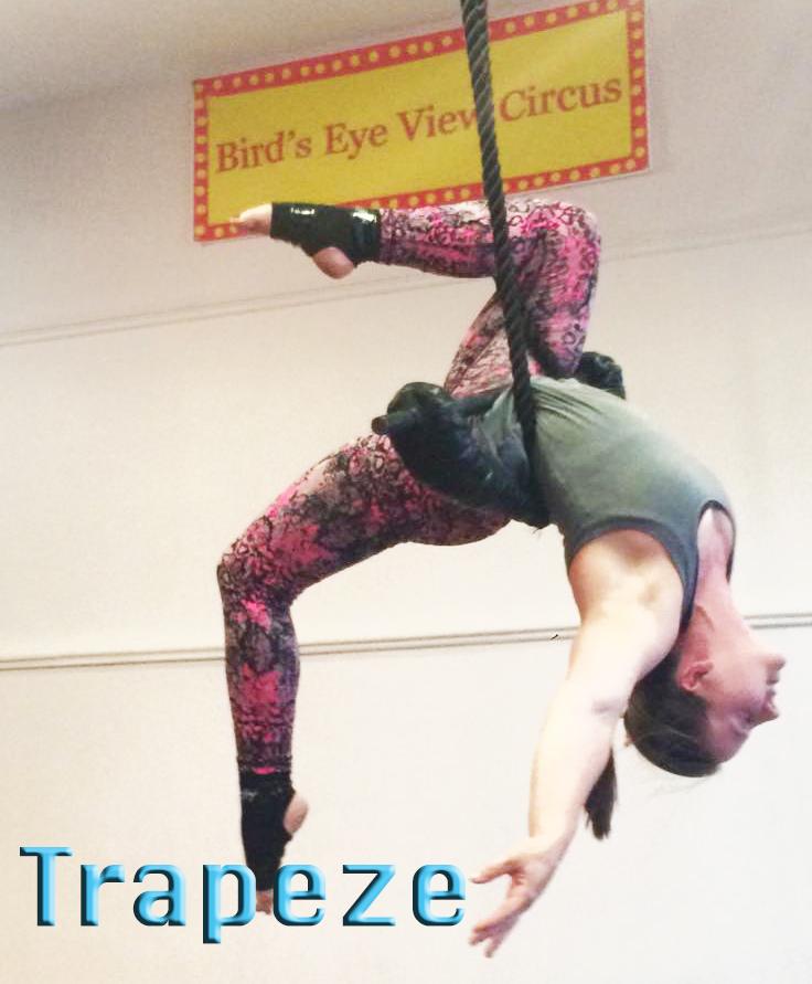 amanda trapeze with logo copy.jpg