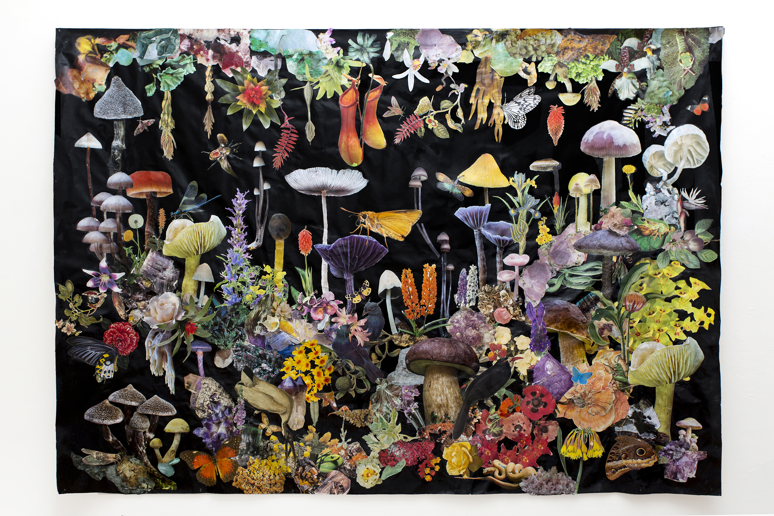 The Dark Forest  220 x 160 cm Mixed Media on canvas   Available for private view   29,000 Sek
