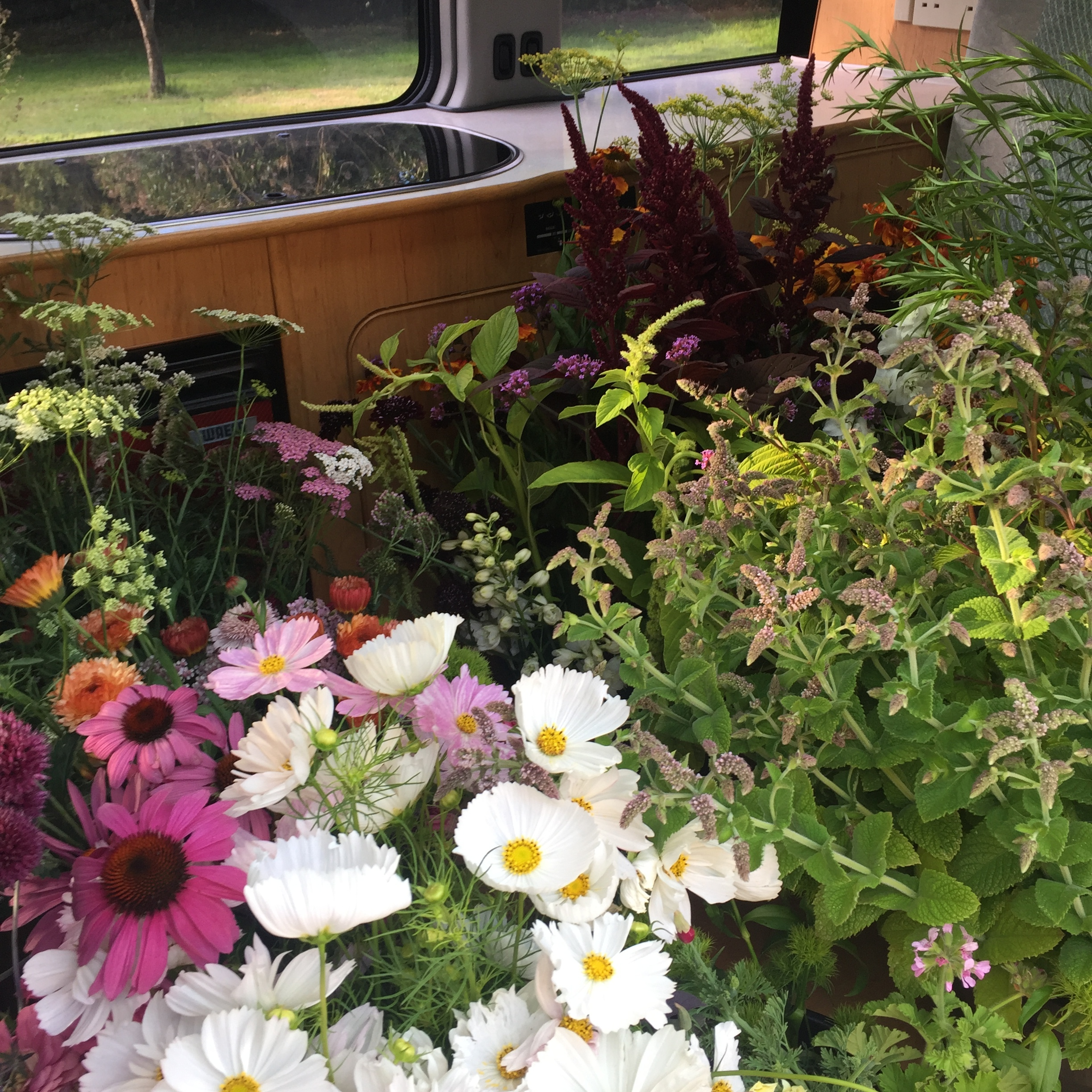 Our camper van filled to be the brim with buckets of flowers ready to be delivered.