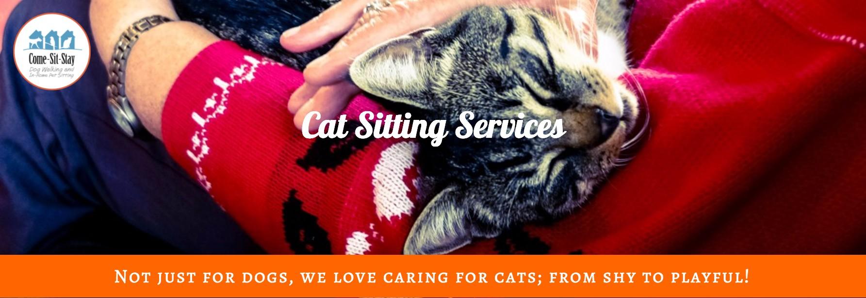 Cat Sitting Banner 2.jpg