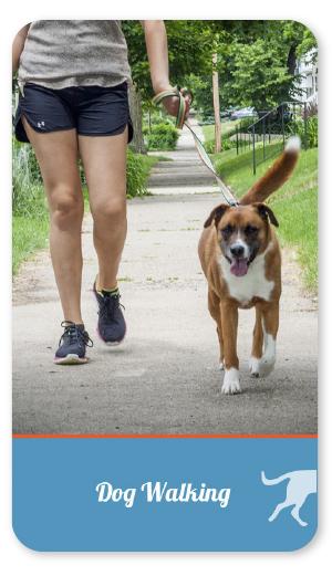 dogwalking_round_over.jpg