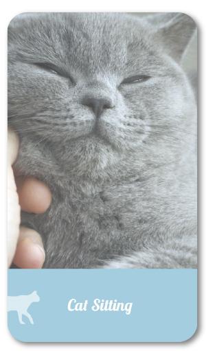 catsitting_round_resting.jpg
