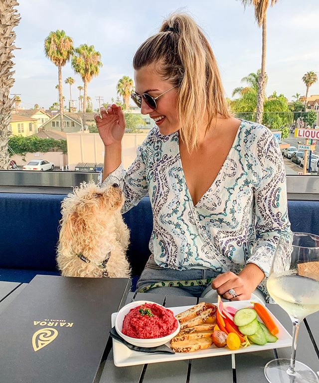 My two favorite things: My dog 🐶 & Rooftop Places 🏙 Perfect Sunday Funday! In fact, @kairoabrewingcompany has it all brunch, lunch, dinner, beer, dog friendly and all the good vibes! But they also have great specials during the week... so plan accordingly: -Monday is happy hour all night! -Tuesday is 30% off all bottles of wine -Wednesday is @geekswhodrink  Be sure to head over there and check it out! With your dog obvi! 😜 #universityheights