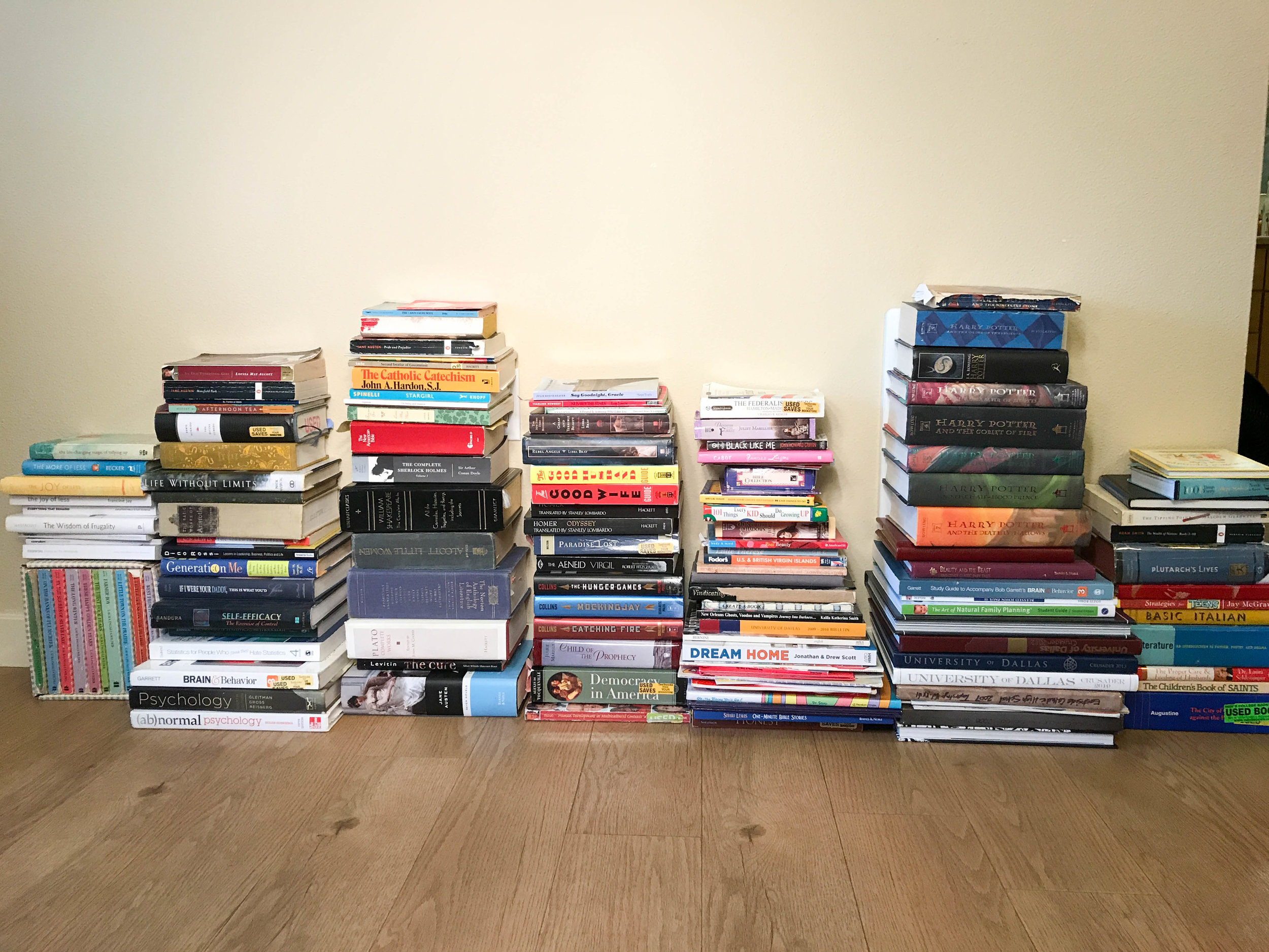 Juliauna's book collection (the minimalist)