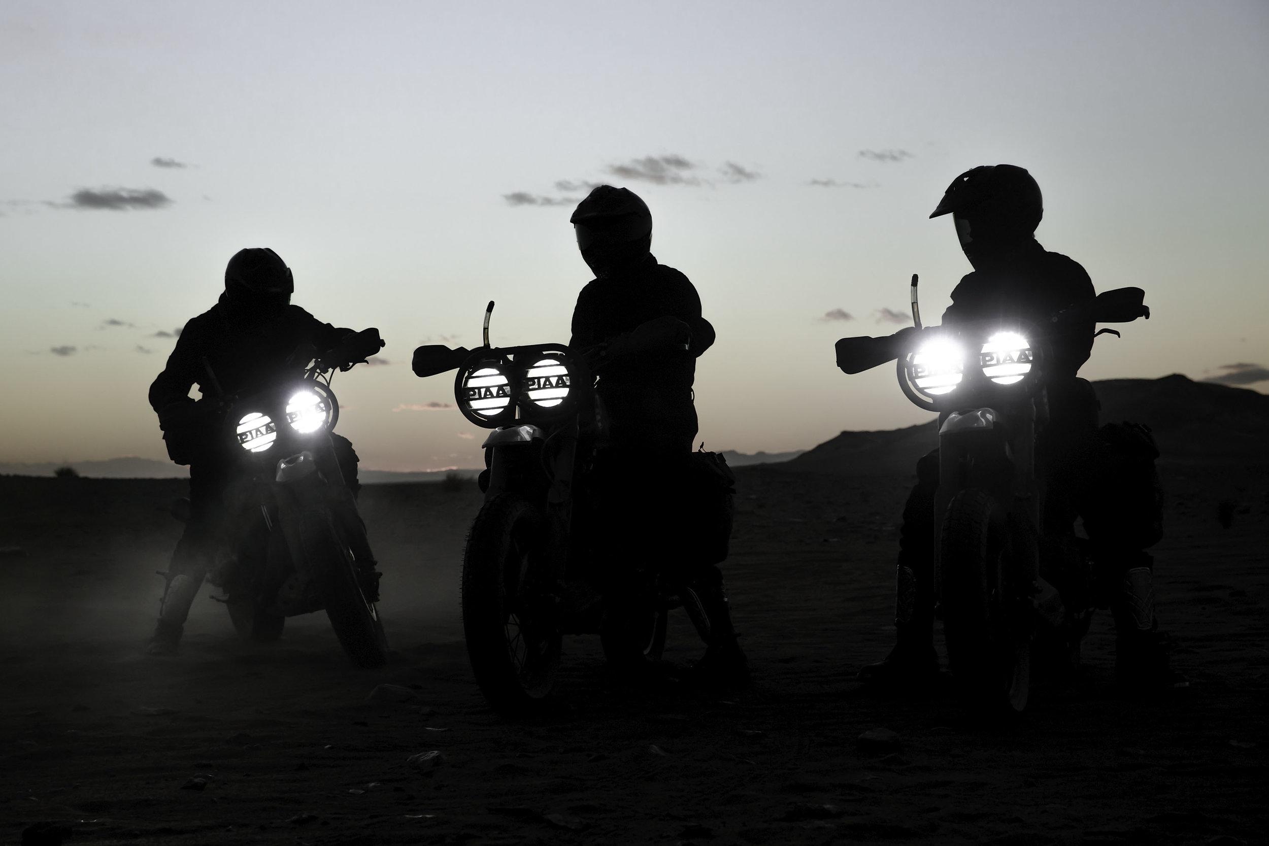 elsolitario-desert-wolves-HD-85.jpg