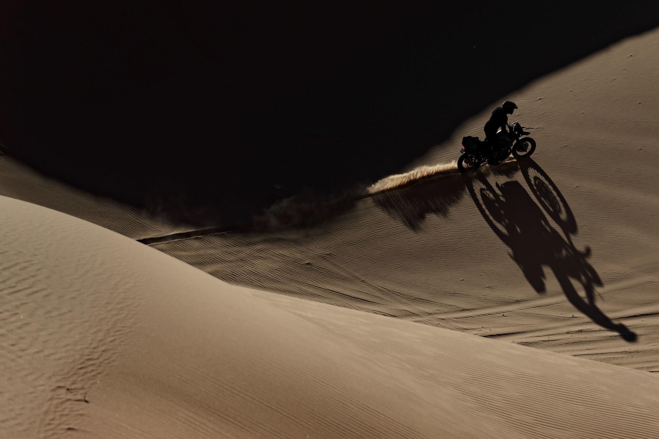 elsolitario-desert-wolves-HD-12.jpg