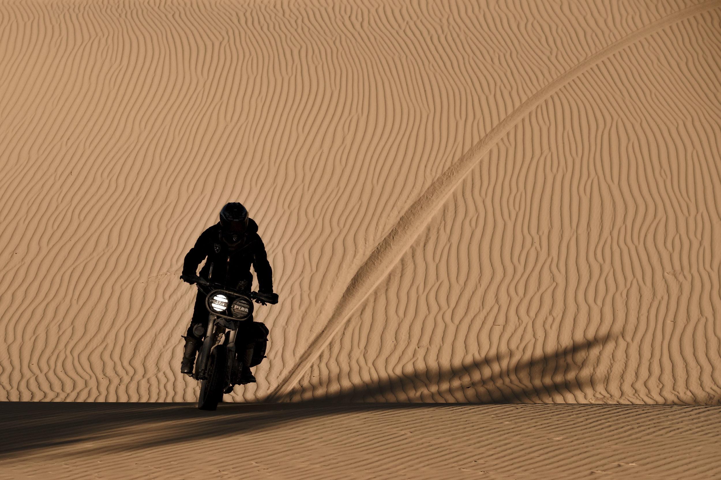 elsolitario-desert-wolves-HD-14.jpg