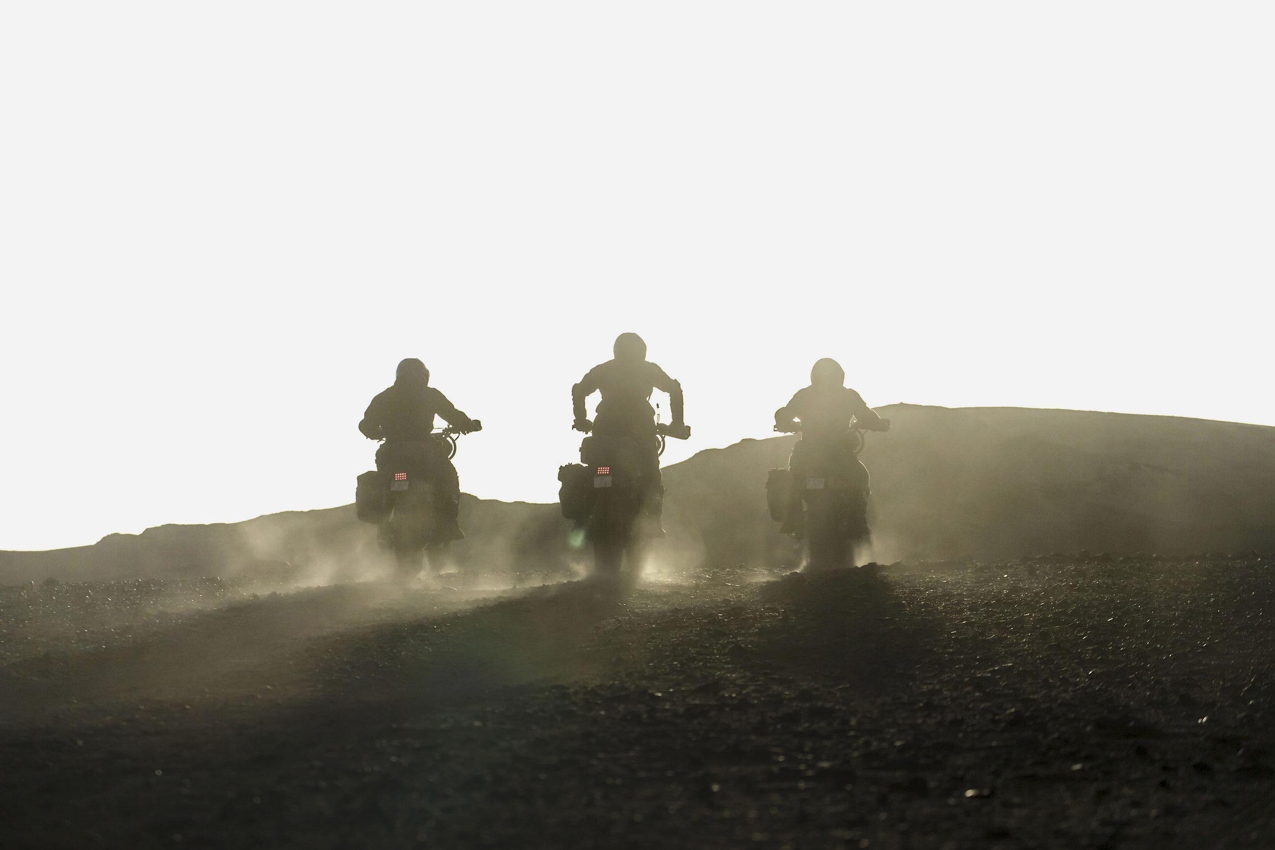 elsolitario-desert-wolves-HD-19.jpg
