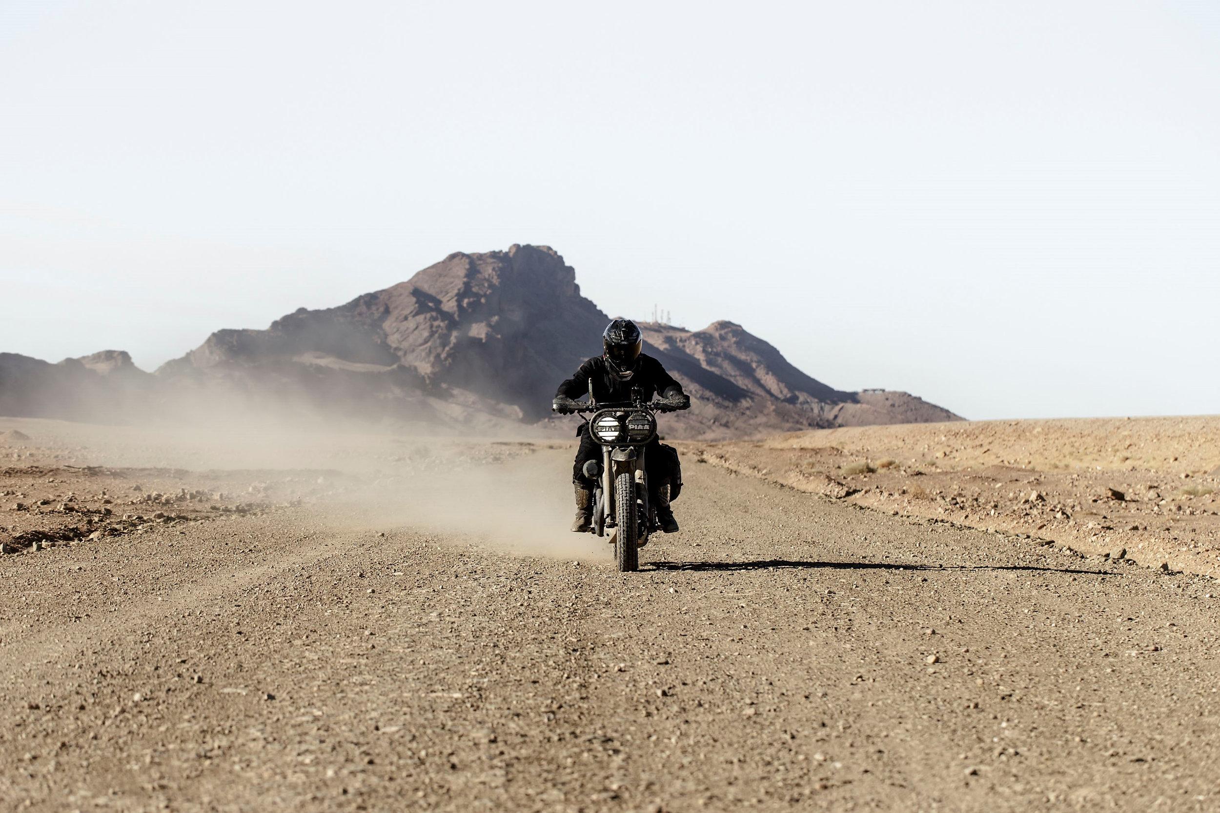 elsolitario-desert-wolves-HD-4.jpg