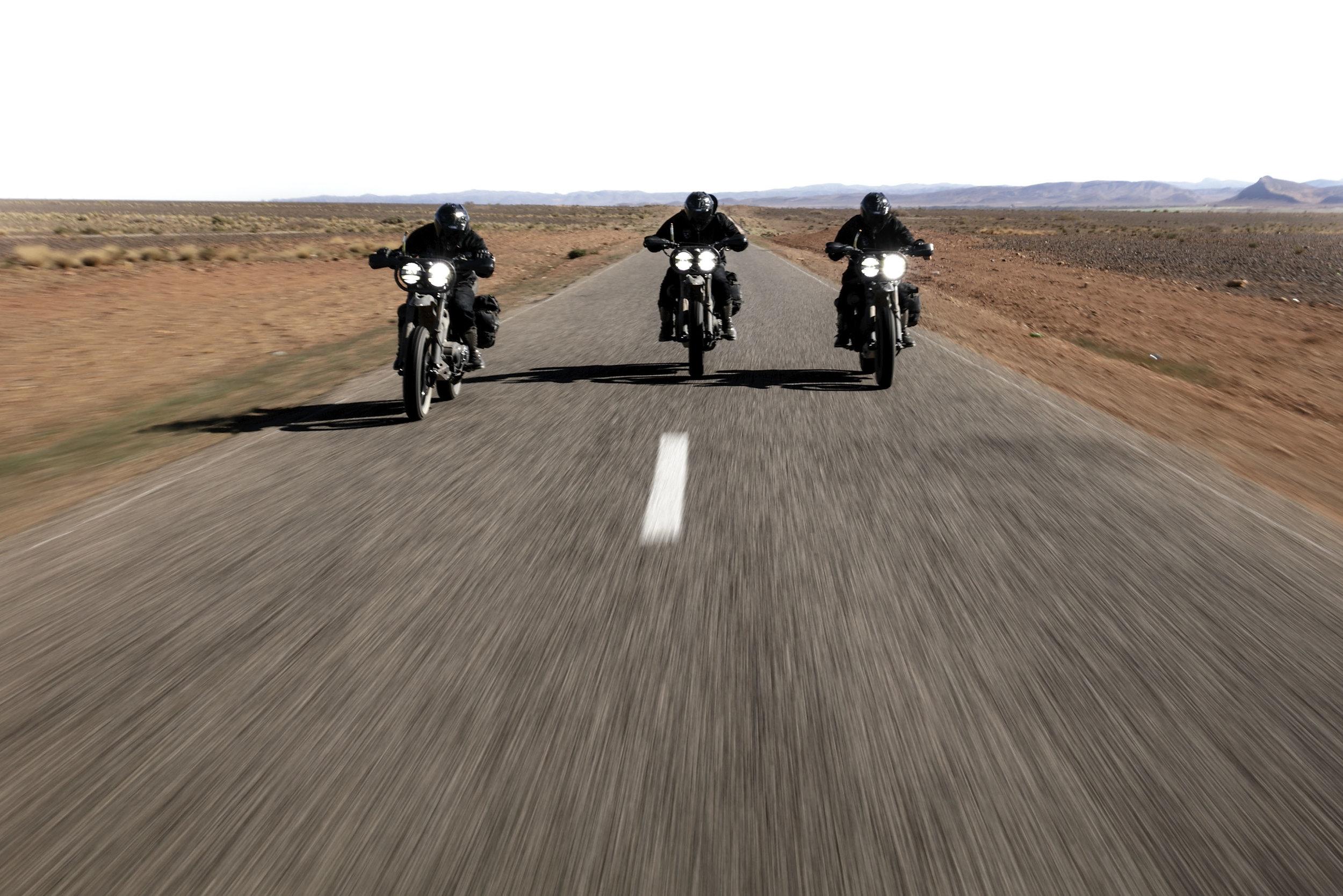 elsolitario-desert-wolves-HD-23.jpg