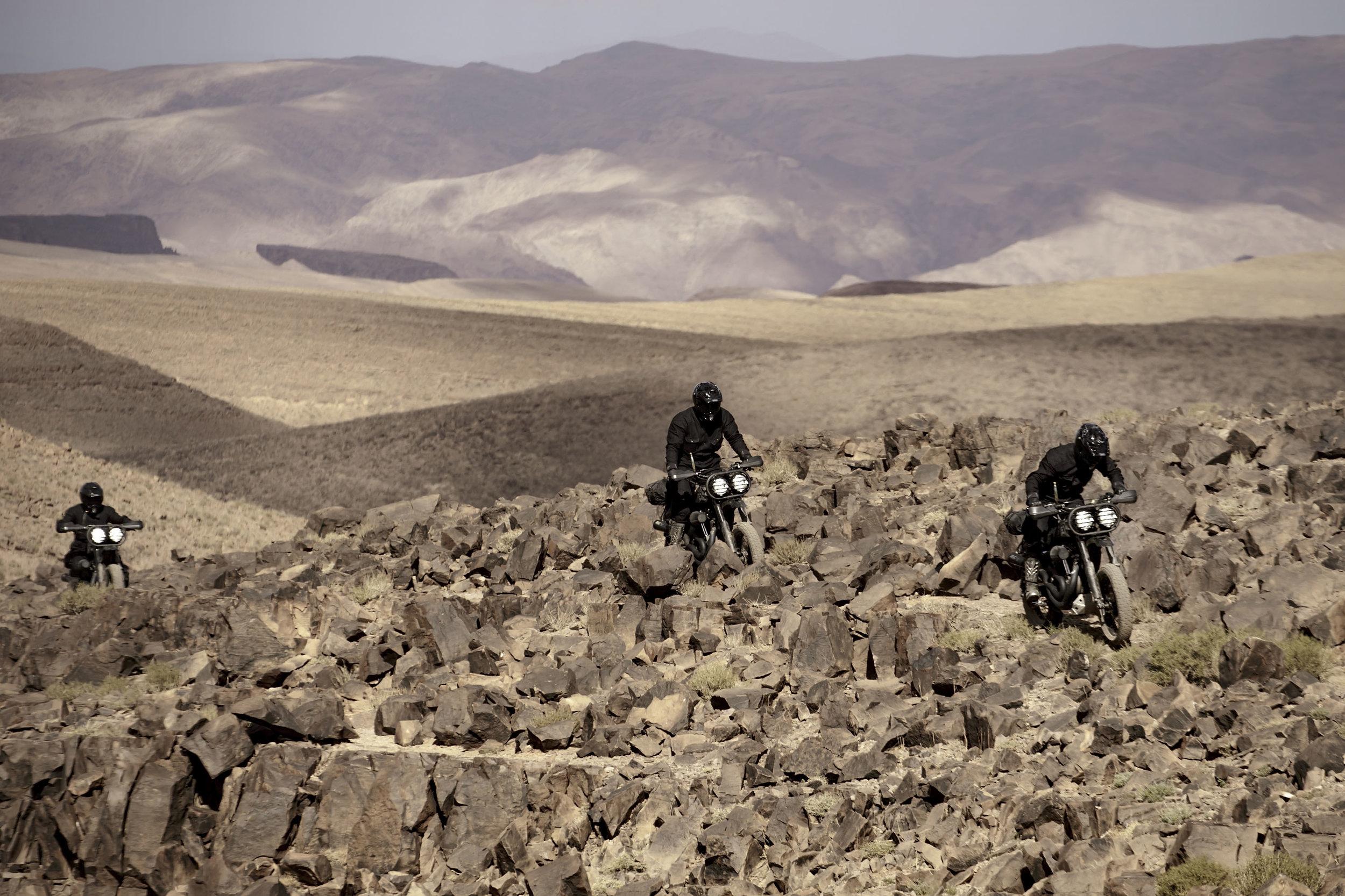 elsolitario-desert-wolves-HD-44.jpg