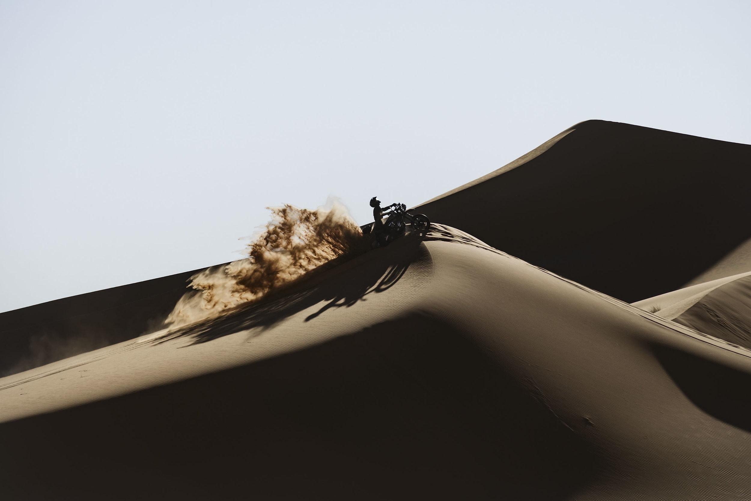 elsolitario-desert-wolves-HD-65.jpg