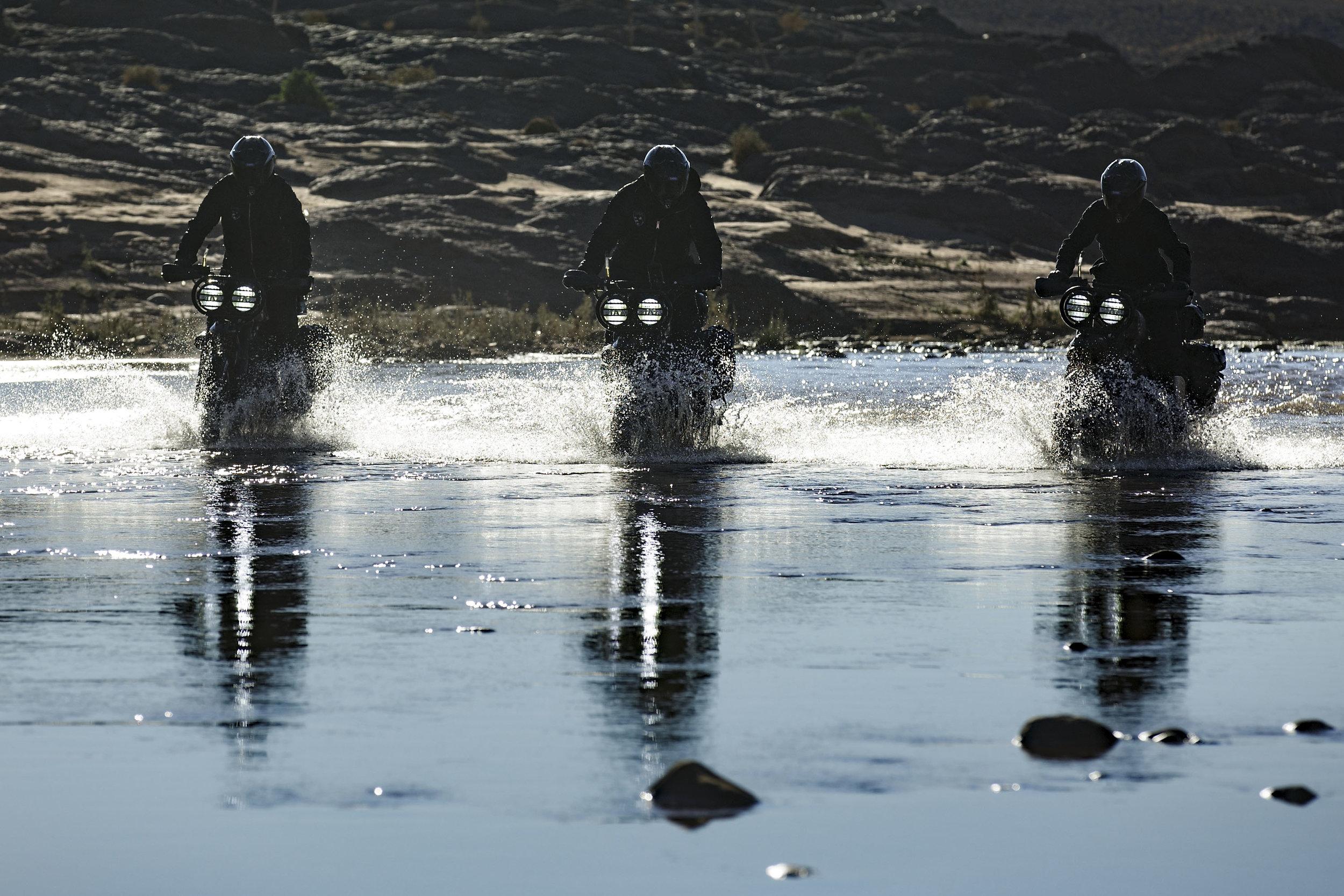 elsolitario-desert-wolves-HD-72.jpg