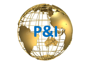 P&I Logo with Wire Globe.png